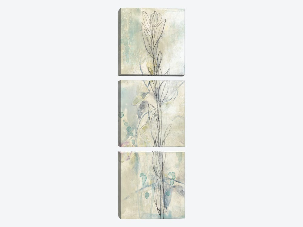 Contour Stem I by Jennifer Goldberger 3-piece Canvas Art