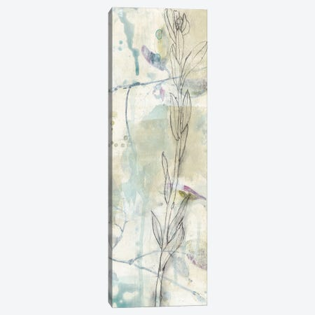 Contour Stem II Canvas Print #JGO482} by Jennifer Goldberger Art Print