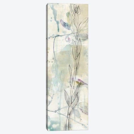 Contour Stem II Canvas Print #JGO482} by Jennifer Goldberger Art Print