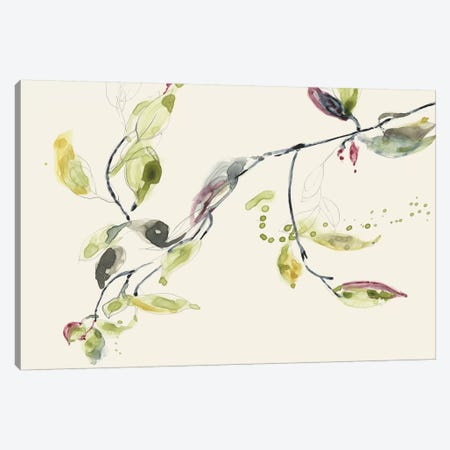 Leaf Branch I Canvas Print #JGO502} by Jennifer Goldberger Canvas Art