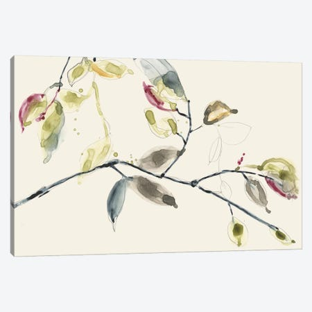 Leaf Branch II Canvas Print #JGO503} by Jennifer Goldberger Canvas Art