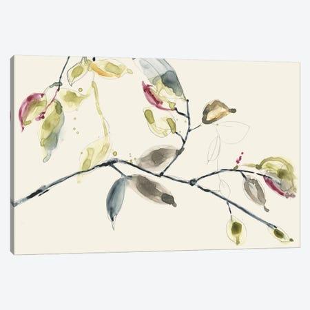 Leaf Branch II Canvas Print #JGO503} by Jennifer Goldberger Canvas Art
