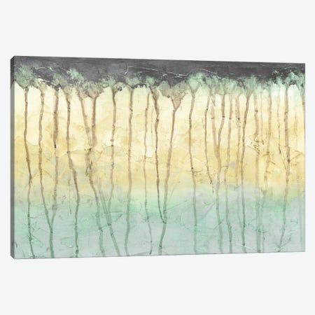 Treeline Light I Canvas Print #JGO553} by Jennifer Goldberger Art Print