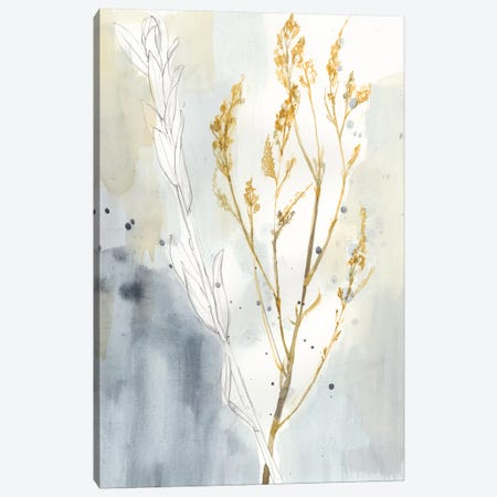 Wild Grass I Canvas Print #JGO567} by Jennifer Goldberger Art Print