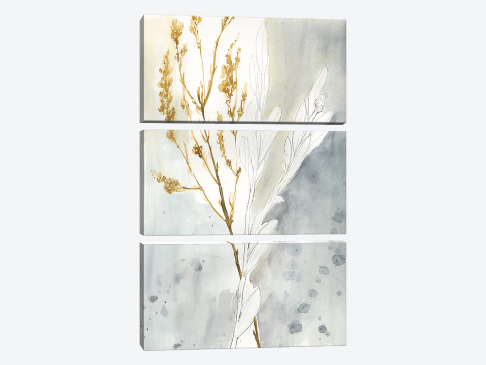 Wild Grass II by Jennifer Goldberger 3-piece Canvas Art