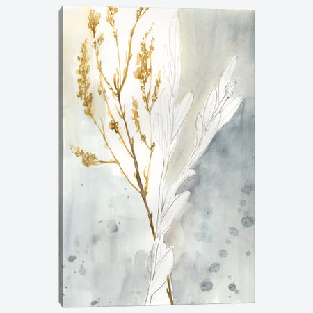 Wild Grass II Canvas Print #JGO568} by Jennifer Goldberger Canvas Art
