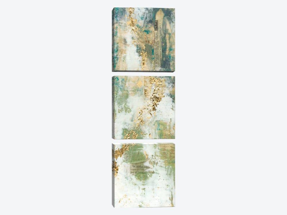 Aural Flow I by Jennifer Goldberger 3-piece Canvas Art