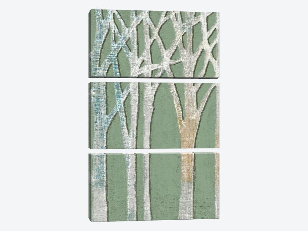 Birchline Triptych I by Jennifer Goldberger 3-piece Canvas Art