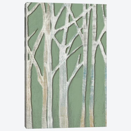 Birchline Triptych II Canvas Print #JGO574} by Jennifer Goldberger Canvas Artwork