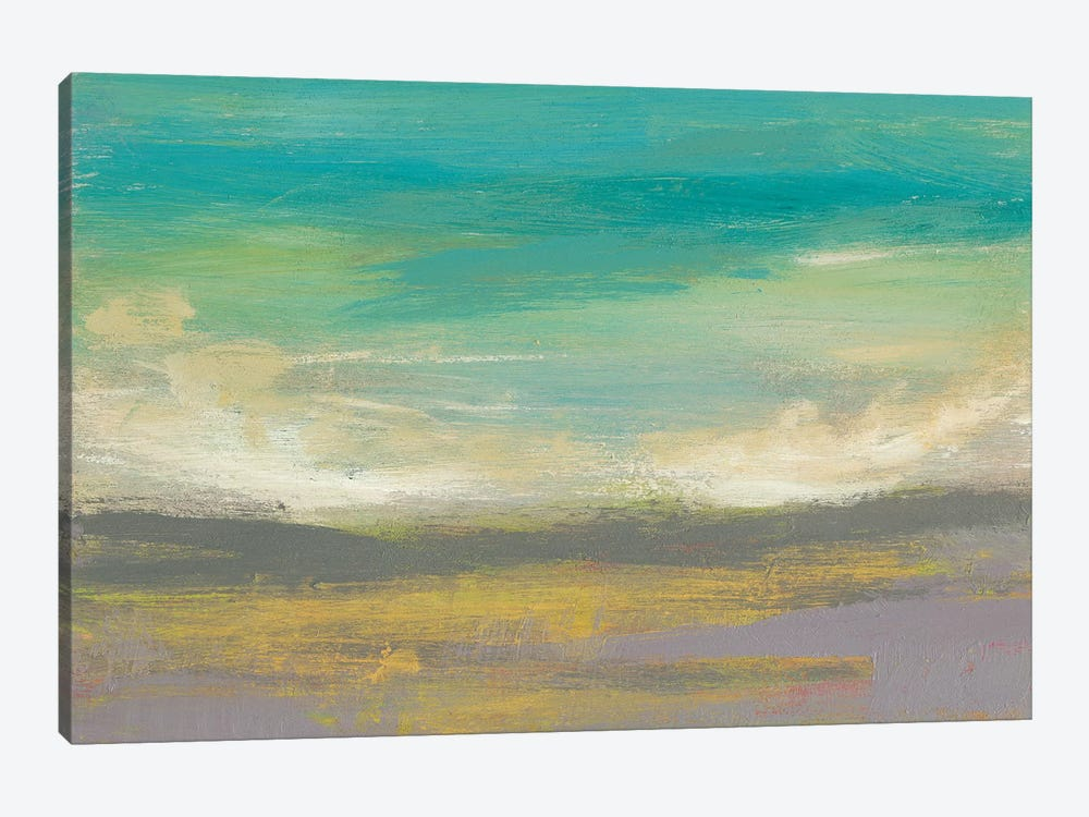 Sunset Study II by Jennifer Goldberger 1-piece Canvas Art Print