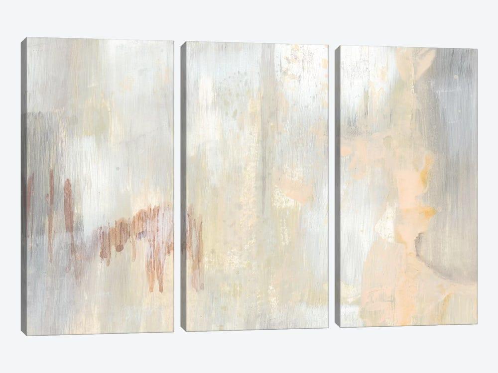 Barely Blush I by Jennifer Goldberger 3-piece Canvas Art Print
