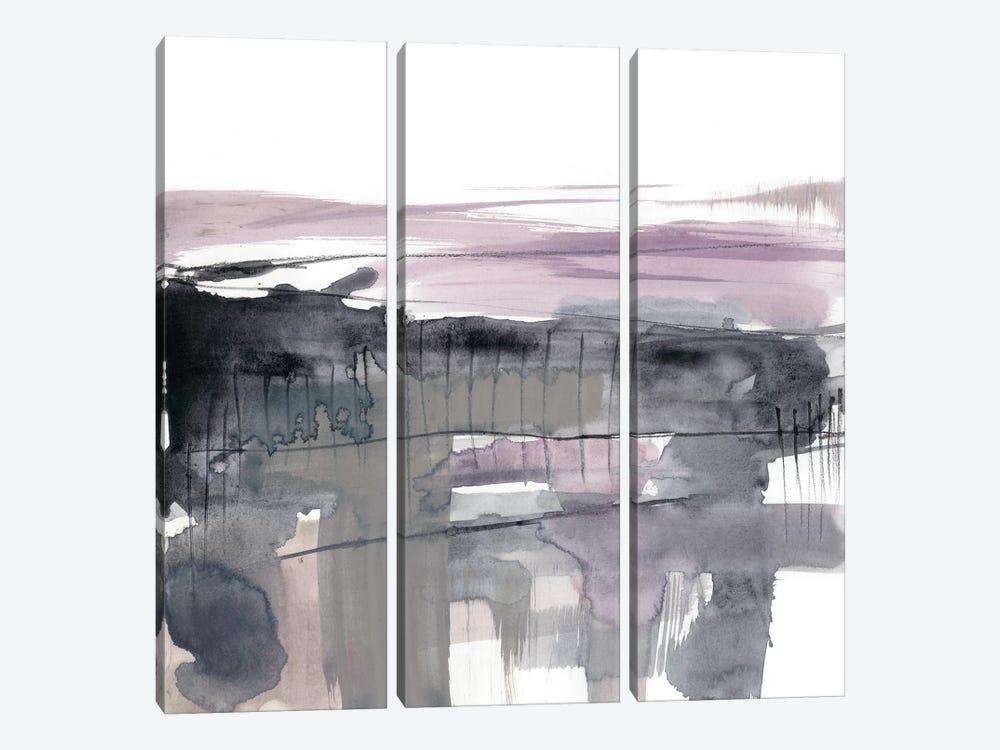 Blush Plane I by Jennifer Goldberger 3-piece Canvas Artwork