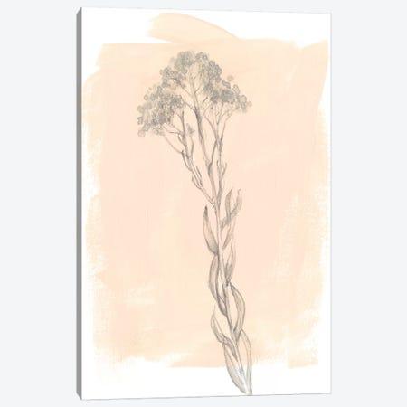 Branch On Blush I 3-Piece Canvas #JGO644} by Jennifer Goldberger Canvas Art