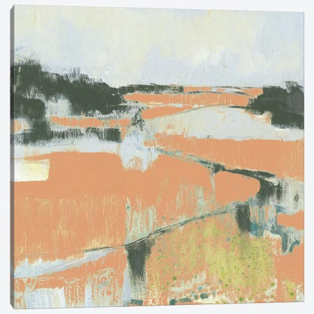 Coral Fields I Canvas Print #JGO650} by Jennifer Goldberger Canvas Art