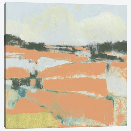 Coral Fields II Canvas Print #JGO651} by Jennifer Goldberger Canvas Art