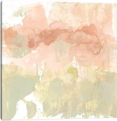 Dusty Blush & Olive I Canvas Art Print