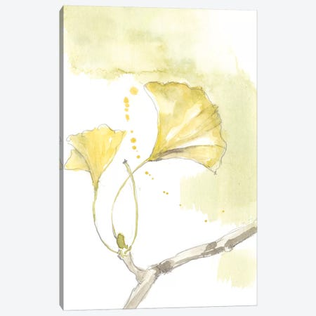 Ginkgo I Canvas Print #JGO661} by Jennifer Goldberger Canvas Print