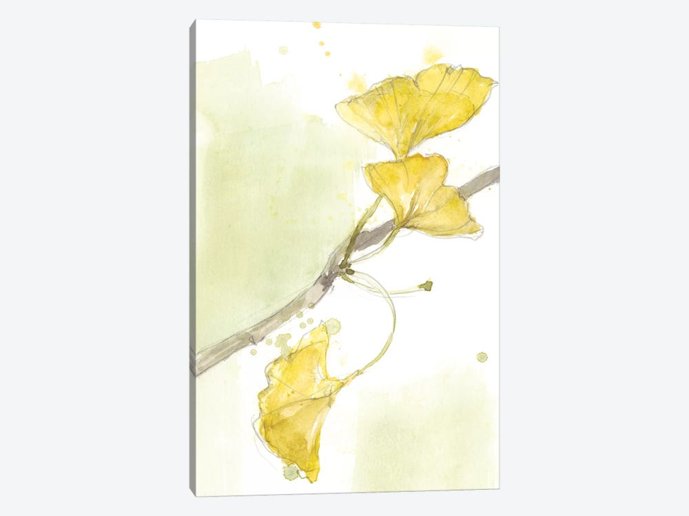 Ginkgo II by Jennifer Goldberger 1-piece Canvas Wall Art