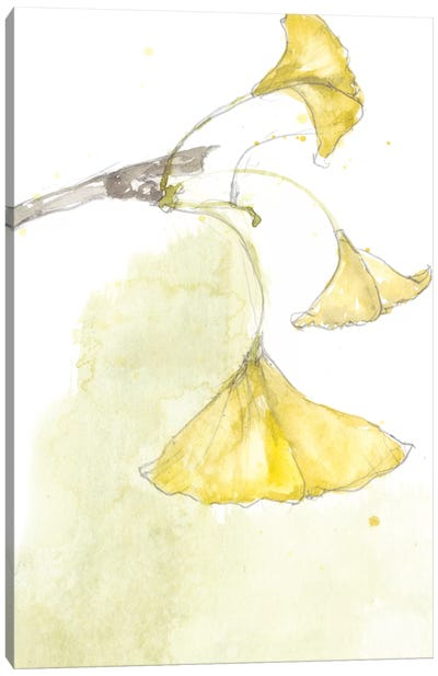 Ginkgo III Canvas Art Print