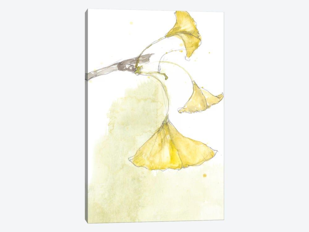 Ginkgo III by Jennifer Goldberger 1-piece Canvas Art Print