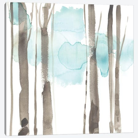 Snow Line IX Canvas Print #JGO698} by Jennifer Goldberger Canvas Artwork