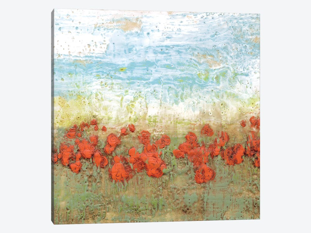 Coral Poppies I by Jennifer Goldberger 1-piece Canvas Art