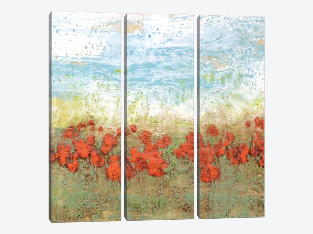 Coral Poppies I by Jennifer Goldberger 3-piece Canvas Art