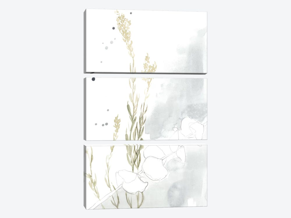 Wildflower II by Jennifer Goldberger 3-piece Canvas Artwork