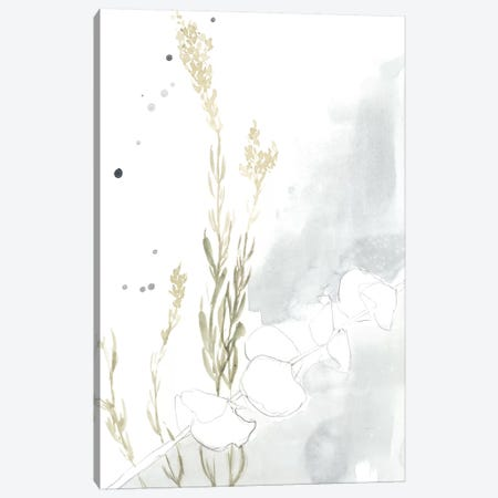 Wildflower II Canvas Print #JGO714} by Jennifer Goldberger Canvas Wall Art