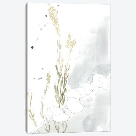 Wildflower II Canvas Print #JGO714} by Jennifer Goldberger Canvas Wall Art