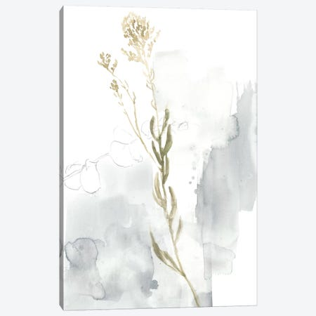 Wildflower III Canvas Print #JGO715} by Jennifer Goldberger Canvas Wall Art