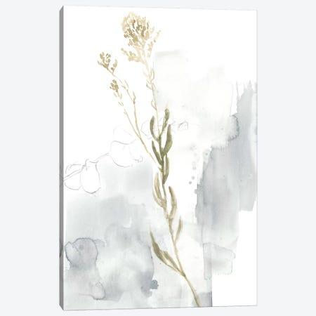 Wildflower III Canvas Print #JGO715} by Jennifer Goldberger Canvas Wall Art