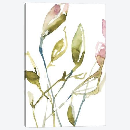 Blooming Stems I 3-Piece Canvas #JGO718} by Jennifer Goldberger Canvas Art Print