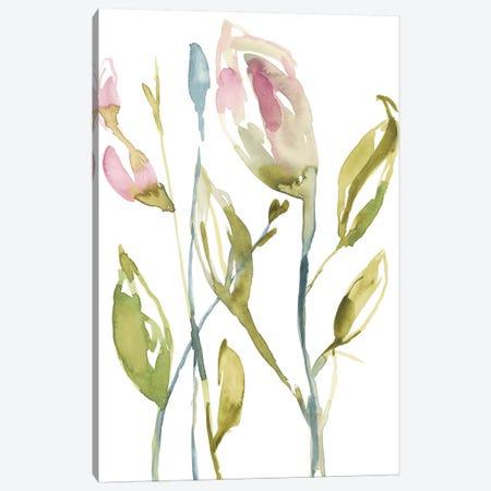 Blooming Stems II Canvas Print #JGO719} by Jennifer Goldberger Canvas Art Print