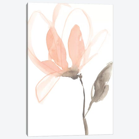 Blush Petals I Canvas Print #JGO726} by Jennifer Goldberger Canvas Print