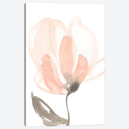 Blush Petals II Canvas Print #JGO727} by Jennifer Goldberger Canvas Art Print