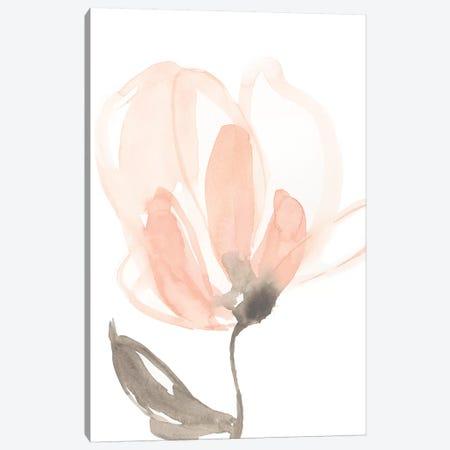 Blush Petals II Canvas Print #JGO727} by Jennifer Goldberger Canvas Art Print