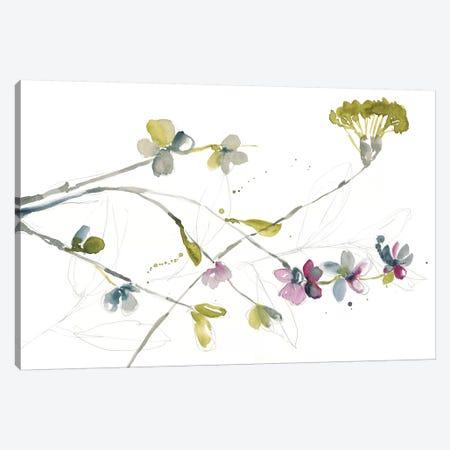 Branches & Blossoms I 3-Piece Canvas #JGO728} by Jennifer Goldberger Canvas Art
