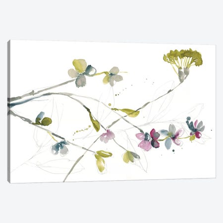 Branches & Blossoms I Canvas Print #JGO728} by Jennifer Goldberger Canvas Art