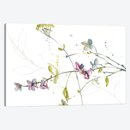 Branches & Blossoms II Canvas Print #JGO729} by Jennifer Goldberger Canvas Artwork
