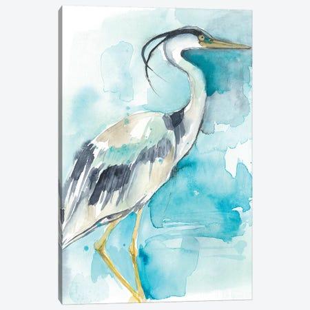 Heron Splash I Canvas Print #JGO759} by Jennifer Goldberger Canvas Art Print