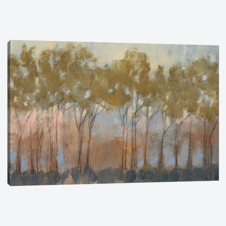 Ochre Treeline I Canvas Print #JGO76} by Jennifer Goldberger Canvas Art