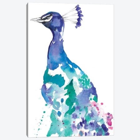 Peacock Splash II Canvas Print #JGO782} by Jennifer Goldberger Canvas Artwork