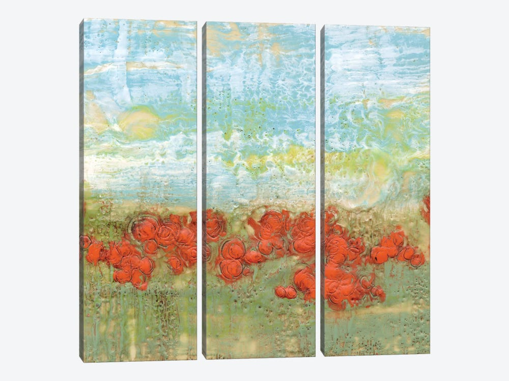 Coral Poppies II by Jennifer Goldberger 3-piece Canvas Art Print