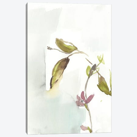 First Blooms I Canvas Print #JGO821} by Jennifer Goldberger Canvas Print