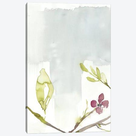 First Blooms II Canvas Print #JGO822} by Jennifer Goldberger Art Print