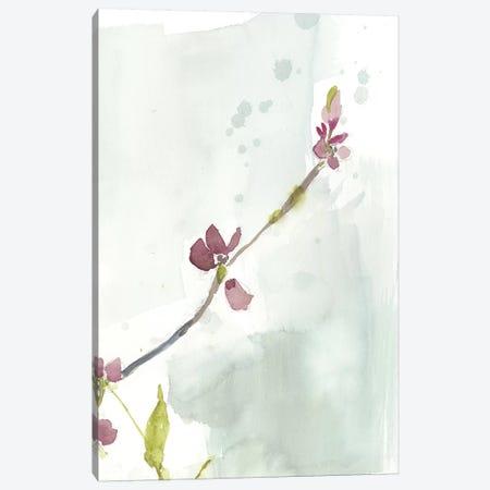 First Blooms III Canvas Print #JGO823} by Jennifer Goldberger Canvas Print