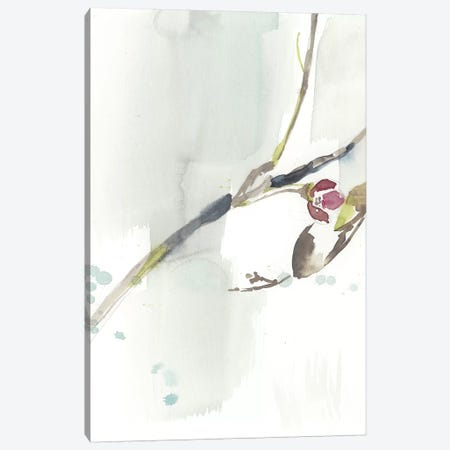 First Blooms IV Canvas Print #JGO824} by Jennifer Goldberger Canvas Wall Art