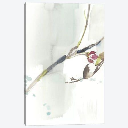 First Blooms IV Canvas Print #JGO824} by Jennifer Goldberger Canvas Wall Art