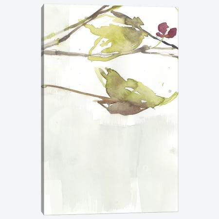 First Blooms V Canvas Print #JGO825} by Jennifer Goldberger Canvas Art